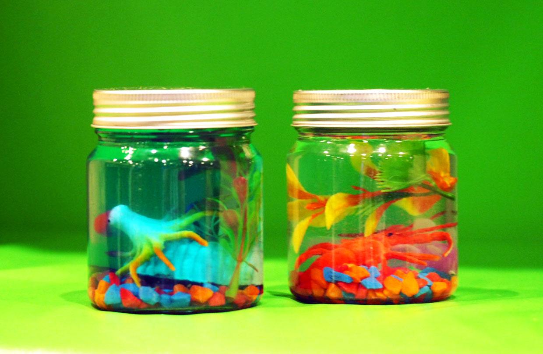 Ocean Discovery Jar